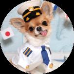 パイロット&CA