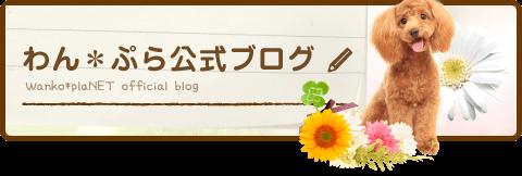 わん*ぷら公式ブログ